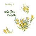 Winter Risen (CD)