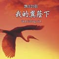 Shadow of My Wings: Chinese Version (CD